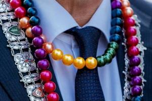 burgemeester vd laan rainbow
